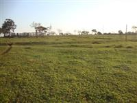 Ótimo Sítio em Uberlândia, 45 km da cidade