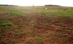 Sítio fazenda a venda em Tupaciguara para lavoura