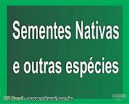 Sementes de Arvores Nativas