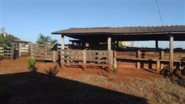 Mangueira para gado em Aroeira e Ipê