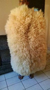 vendas de couros de ovelha(carneiro) peles(pelegos)