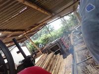 madeira de eucaliptus serrada