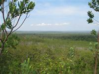 Fazenda de 330 ha em Campos de Julio