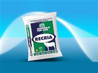 Top Line Recria - MATSUDA