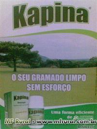 KAPINA controle de ervas daninhas em gramados (tiririca)