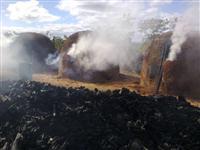 Carvão Vegetal - 100% Eucalipto Urophila