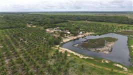 Fazenda com 1.079.986,17 m²  (107,99 Ha.) com praia exclusiva, sauna, piscina e lagoa com ilha