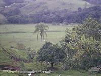 Vende-se Sítio de 26 Alqueires - Sul de Minas