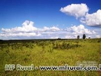 Fazenda na região de Capelinha - MG com 940 ha.