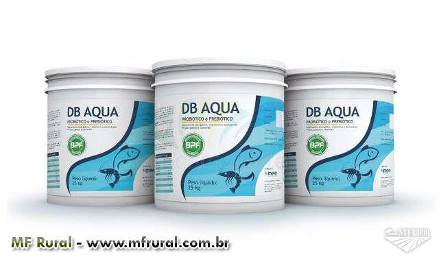 tratamento para água de tanques de peixes controle de lodo , tanque com água verde ,doenças de peixe