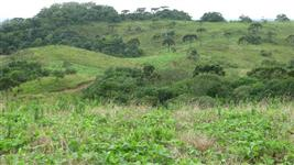 Área Rural em Cerro Negro/SC