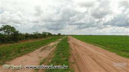 Fazenda de 3375 ha na Coaceral