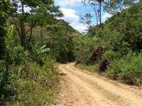 FAZENDA EM PAU BRASIL BAHIA COM 110 HECTARES