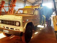 Caminh�o  Chevrolet D 60  ano 78