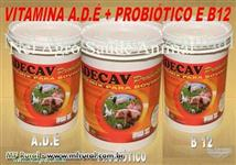 VITAMINA ADE COM PROBIÓTICO + B12 E LEVEDURA PECUARIA LUCRATIVA-BALDE DE 20KG
