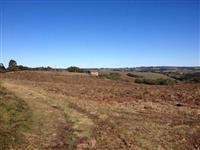 Vendo 40 hectares com Vinícula