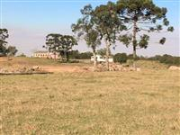 Fazenda 218ha_Encruzilhada do Sul