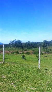 Área para Fazenda de 84 alqueires