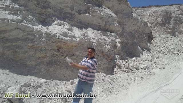Consultoria em Exportação de Minérios