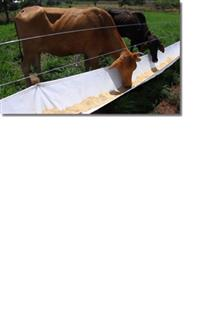 COCHO PARA ALIMENTAÇÃO ANIMAL