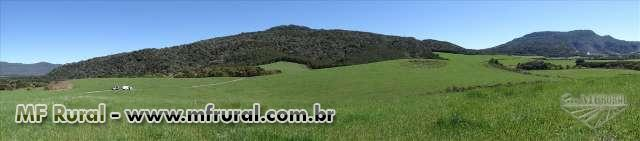 ESPETACULAR FAZENDA 365 HECT, 50M DE  RODOV. ASFALTADA-COMPLETA INFRAESTRUTURA