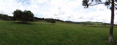 Fazenda 238 hectares com 70 % de área de pastagem e lavoura , lindo rio na divisa , galpões e casa.