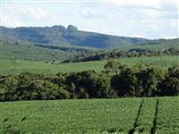 Fazenda na Serra Catarinense 456 hectares -Uma linda Boa Casa Sede -Boa área para Plantio.