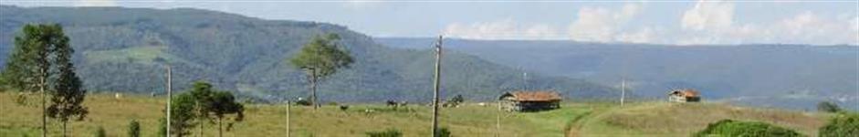 Linda  área com 100 hectares , 2 casas ,galpões , lagoas , nascente , pastagens e linda mata nativa