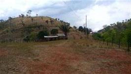 Fazenda Niquelândia com 372 hectares
