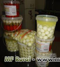 Ovos de Codorna em conserva