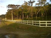 Réguas de eucaliptus p/ Mangueiras e Cercas