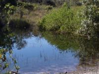 fazenda jatai-serranopolis 48,5 terra excelente de agua otimo preço