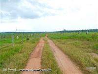 Fazenda em Alta Floresta com área de 6.880 há