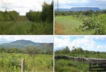 Fazenda no Município de Chapada dos Guimarães, estado do Mato Grosso com 7,551ha
