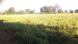 Fazenda município Poconé MT