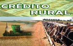 Linha de Credito Reflorestamentos em todo Brasil pre aprovada  80 a 2milh sem burocracia e sem juros