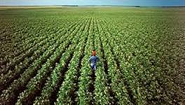 Credito Rural para compra de Fazenda, Sitios e Terrenos S/ burocracia.Disponível em vários estados.