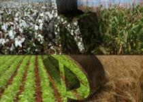 INVISTA!  Compre Fazenda, Sitio e Terrenos, em diversos lugares e valores