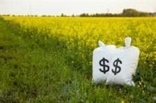 Linha de credito p/ casas, fazenda, lotes, sítios. Opção para capital de giro.