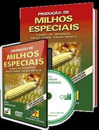 Curso Produção de Milhos Especiais