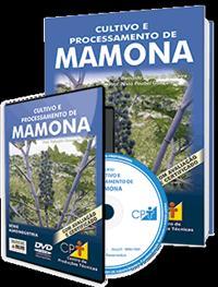 Curso Cultivo e Processamento de Mamona