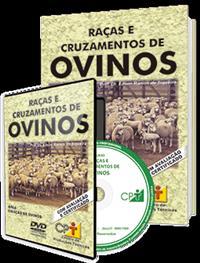 Curso Raças e Cruzamentos de Ovinos