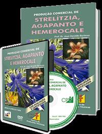 Curso Produção Comercial de Strelítzia, Agapanto e Hemerocale