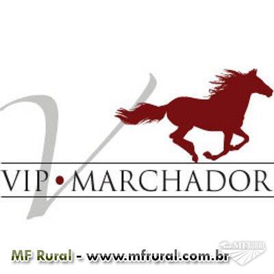 Vip Marchador