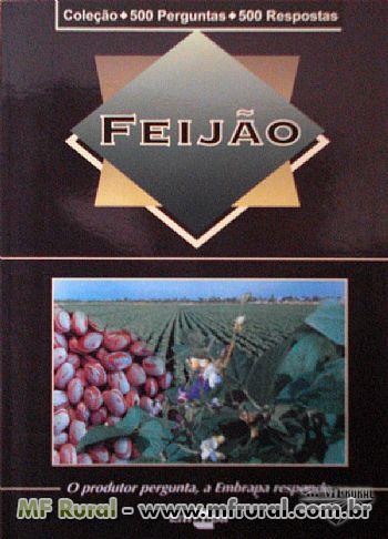 Livro Coleção 500 Perguntas 500 Respostas: Feijão - 1ª Edição