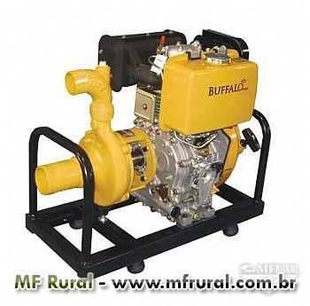 "Motobomba Bufallo BFD 3"" x 2"" - Chorume - 10.0cv - Partida manual/elétrica - Diesel"