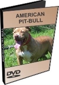 American Pit-Bull - DVD