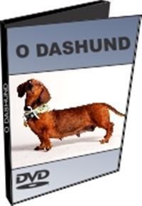 O Daschund - DVD