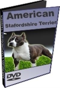 American Stafordshire Terrier - DVD