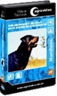 Adestramento de Cães Para Proteção Patrimonial - DVD